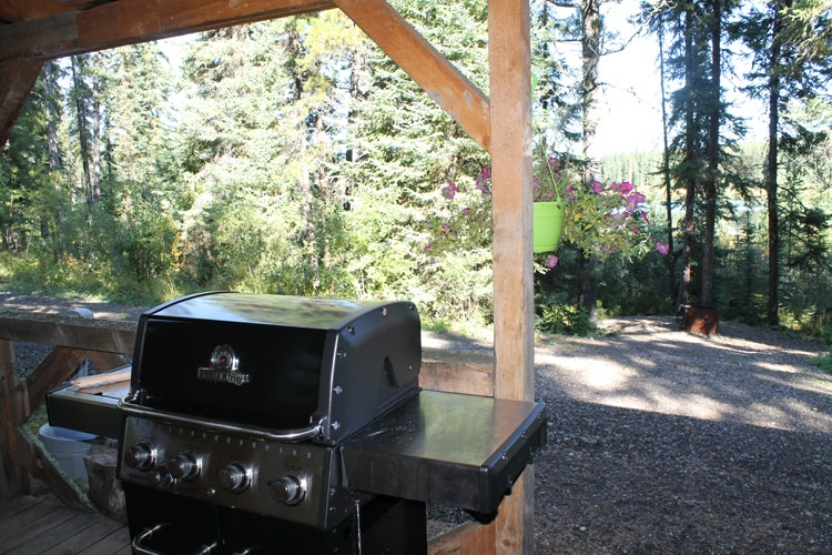 WRP-Cabin-Lakeview-BBQ